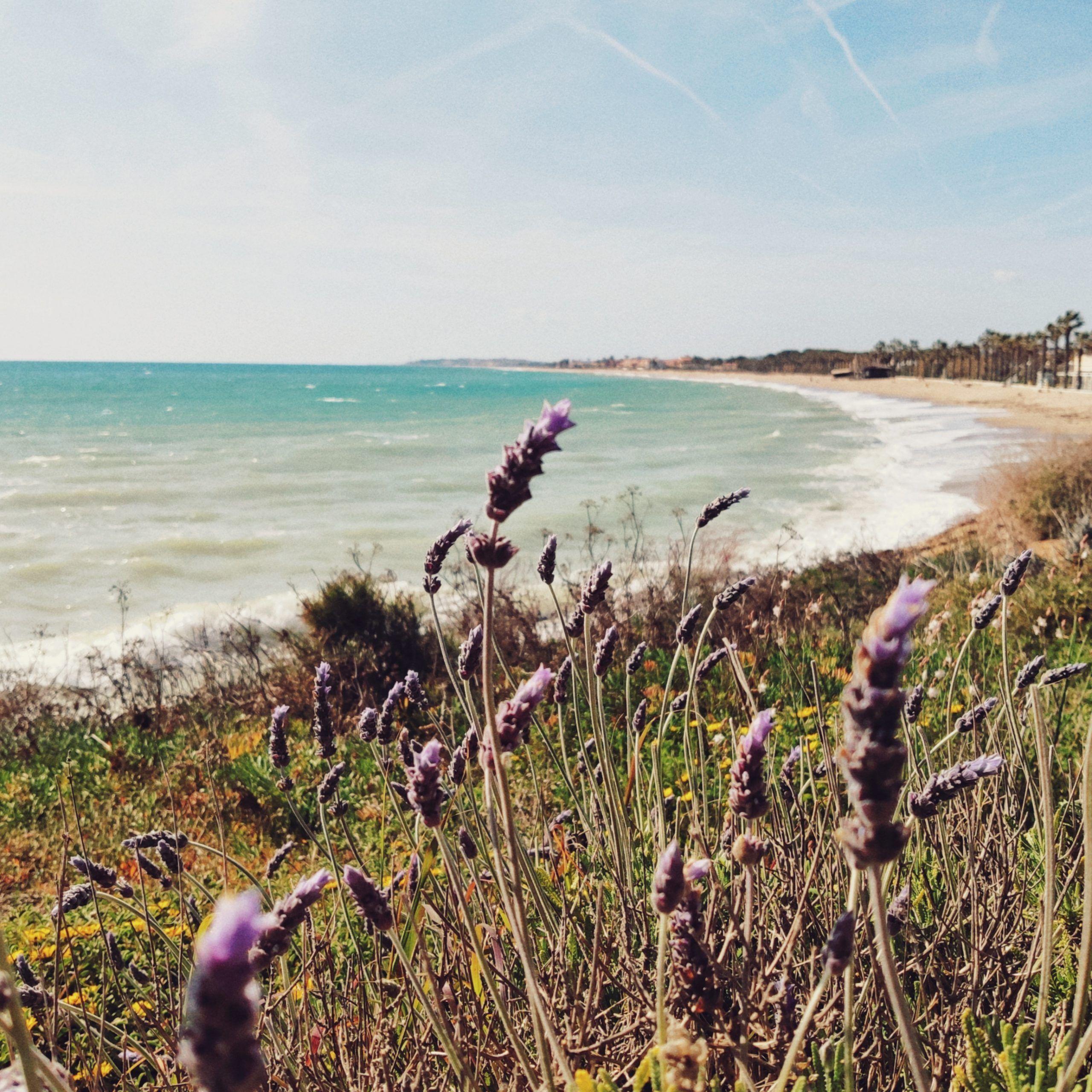Playa Creixell, Tarragona